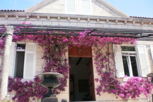 house in Peljesac